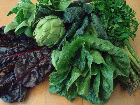 Dark-Leafy-Greens-Are-Excellent-Sources-of-Calcium