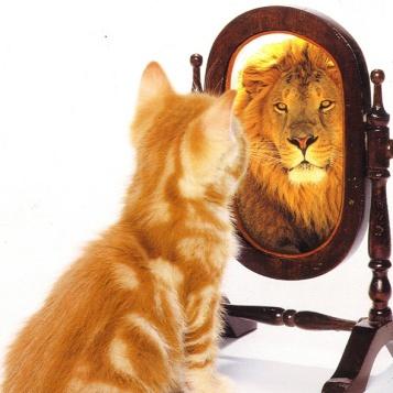 lion-and-self-esteem