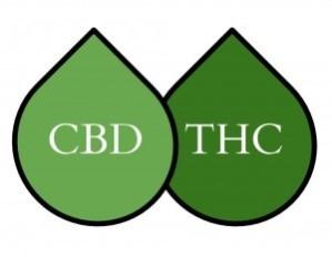 cbd-vs-thc-300x233