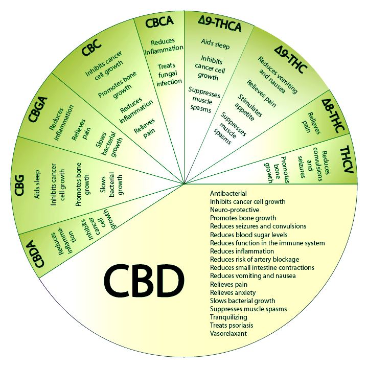 CBD_Pie-Chart